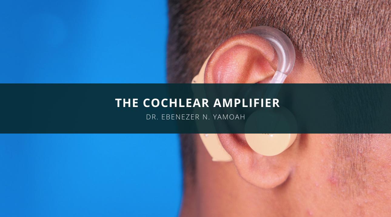 Dr. Ebenezer N. Yamoah Discusses the Cochlear Amplifier